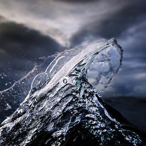 Frozen-Fin