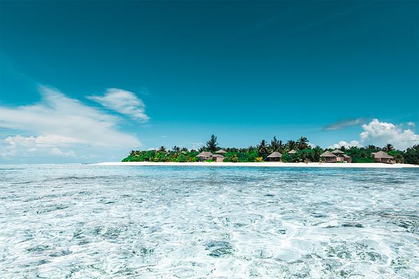 Island Sanctuarty